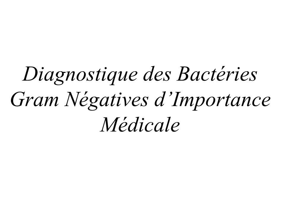 Diagnostique des Bactéries Gram Négatives dImportance Médicale