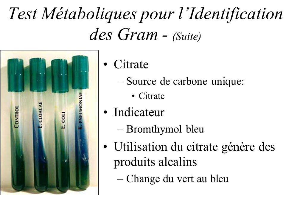 Test Métaboliques pour lIdentification des Gram - (Suite) Citrate –Source de carbone unique: Citrate Indicateur –Bromthymol bleu Utilisation du citrate génère des produits alcalins –Change du vert au bleu