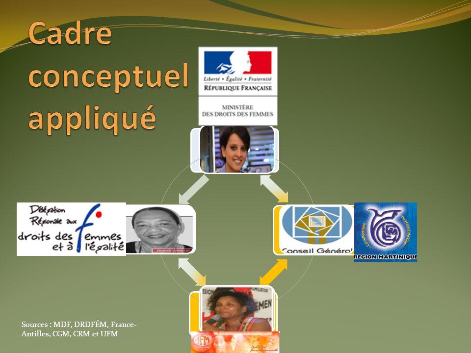 France MDF Gouvernements locaux CGM et CRM ONG UFM Déléguations régionales DRDFÉM Sources : MDF, DRDFÉM, France- Antilles, CGM, CRM et UFM