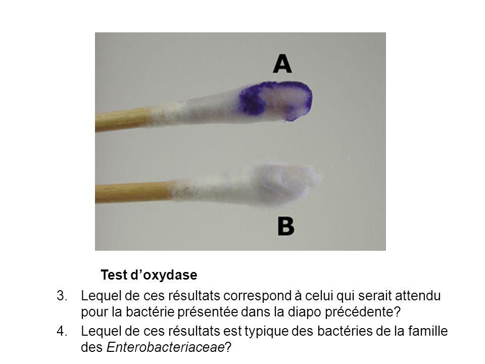 Phénol rouge glucose 5.Lesquels, sil y en a, de ces résultats ne sont pas typiques des Enterobacteriaceae.