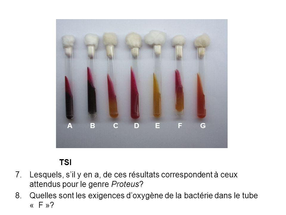 Inconnu bactérien 9.Quelle est lidentité probable de cette bactérie.