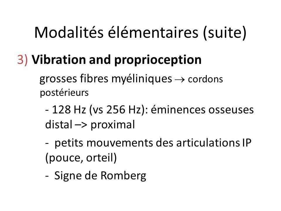 Modalités élémentaires (suite) 3) Vibration and proprioception grosses fibres myéliniques cordons postérieurs - 128 Hz (vs 256 Hz): éminences osseuses
