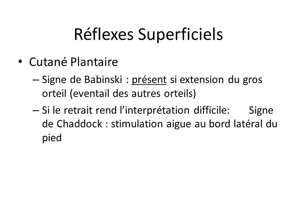 Réflexes Superficiels Cutané Plantaire – Signe de Babinski : présent si extension du gros orteil (eventail des autres orteils) – Si le retrait rend li