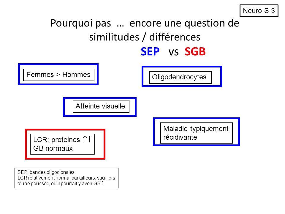 Pourquoi pas … encore une question de similitudes / différences SEP vs SGB Femmes > Hommes Oligodendrocytes Atteinte visuelle Maladie typiquement réci
