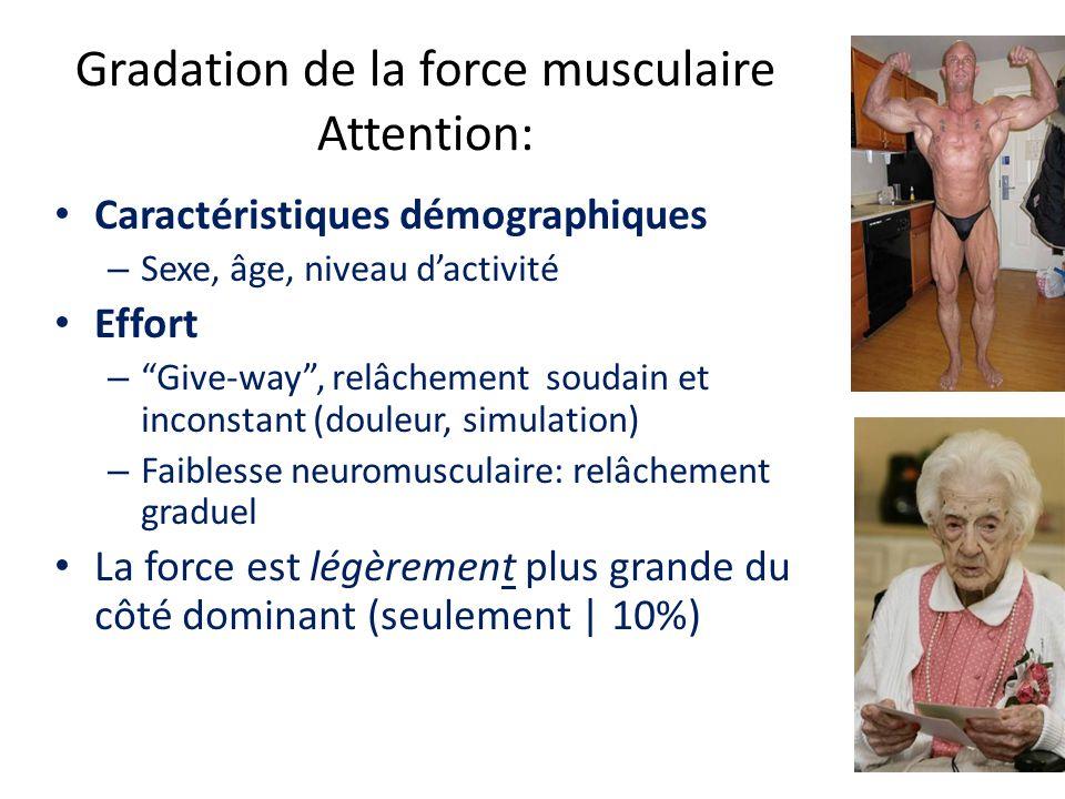 Gradation de la force musculaire Attention: Caractéristiques démographiques – Sexe, âge, niveau dactivité Effort – Give-way, relâchement soudain et inconstant (douleur, simulation) – Faiblesse neuromusculaire: relâchement graduel La force est légèrement plus grande du côté dominant (seulement | 10%)