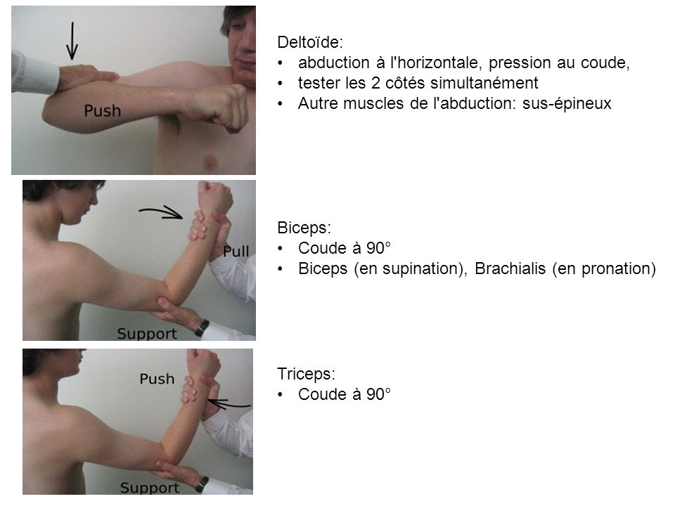 Deltoïde: abduction à l'horizontale, pression au coude, tester les 2 côtés simultanément Autre muscles de l'abduction: sus-épineux Biceps: Coude à 90°