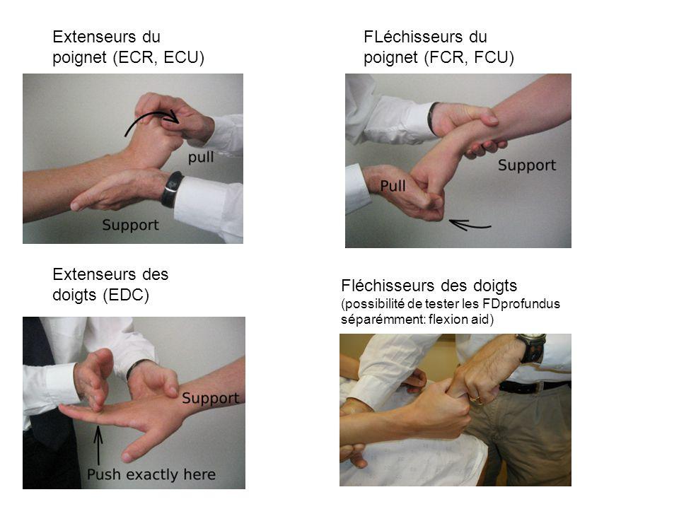 Extenseurs du poignet (ECR, ECU) FLéchisseurs du poignet (FCR, FCU) Extenseurs des doigts (EDC) Fléchisseurs des doigts (possibilité de tester les FDprofundus séparémment: flexion aid)