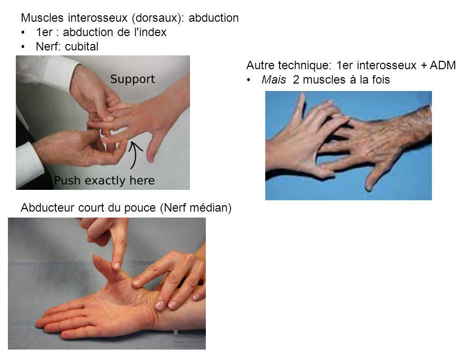 Muscles interosseux (dorsaux): abduction 1er : abduction de l index Nerf: cubital Autre technique: 1er interosseux + ADM Mais 2 muscles à la fois Abducteur court du pouce (Nerf médian)