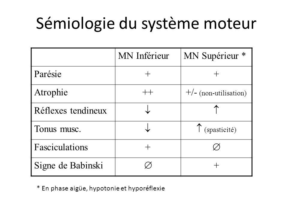 Sémiologie du système moteur MN InférieurMN Supérieur * Parésie++ Atrophie+++/- (non-utilisation) Réflexes tendineux Tonus musc. (spasticité) Fascicul