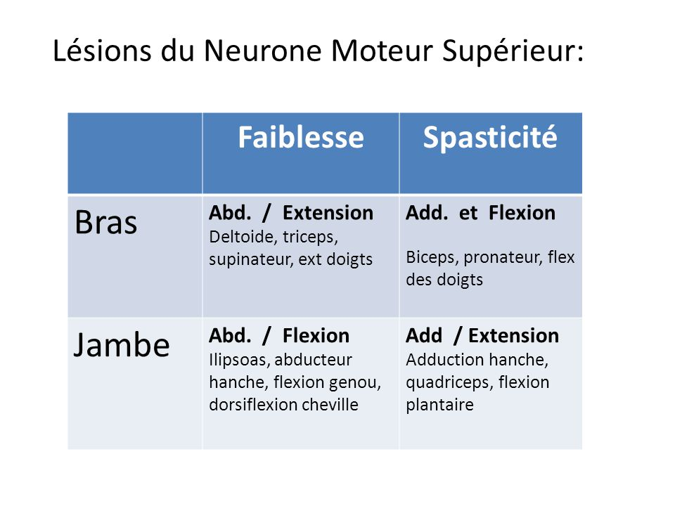 Lésions du Neurone Moteur Supérieur: FaiblesseSpasticité Bras Abd. / Extension Deltoide, triceps, supinateur, ext doigts Add. et Flexion Biceps, prona
