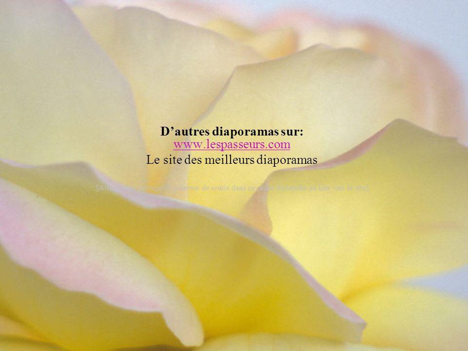 Merveilleux texte positif de: Marie-France Ferrand Création de Lise Tardif (mai 2005) Je souhaite plein de petits bonheurs Pour vous aujourd'hui.