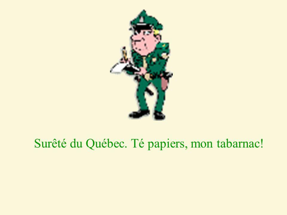 Surêté du Québec. Té papiers, mon tabarnac!