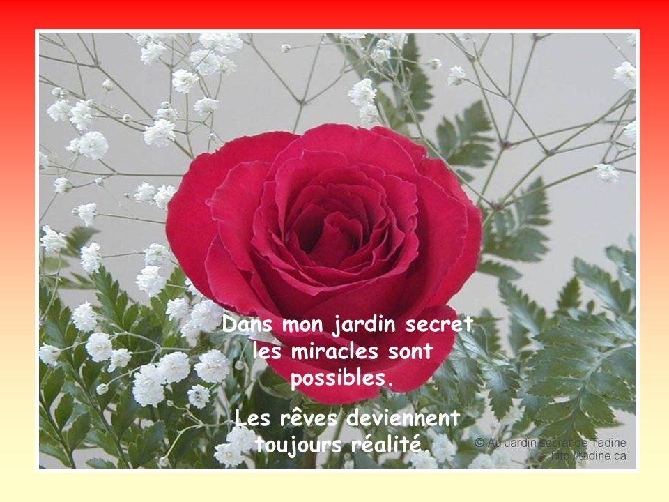 Dans mon jardin secret fleurissent des roses. Fragiles, innocentes et tendrement belles.