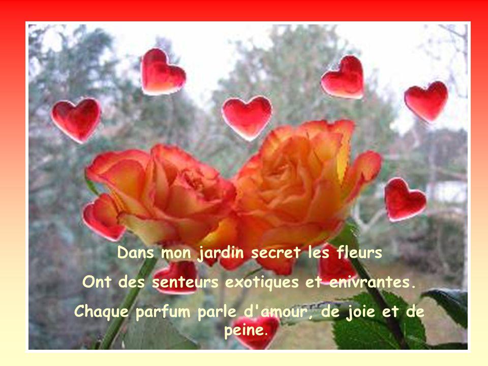 Dans mon jardin secret les roses sont souvent seules, Parfois en couples, mais toujours tendrement parfumées.