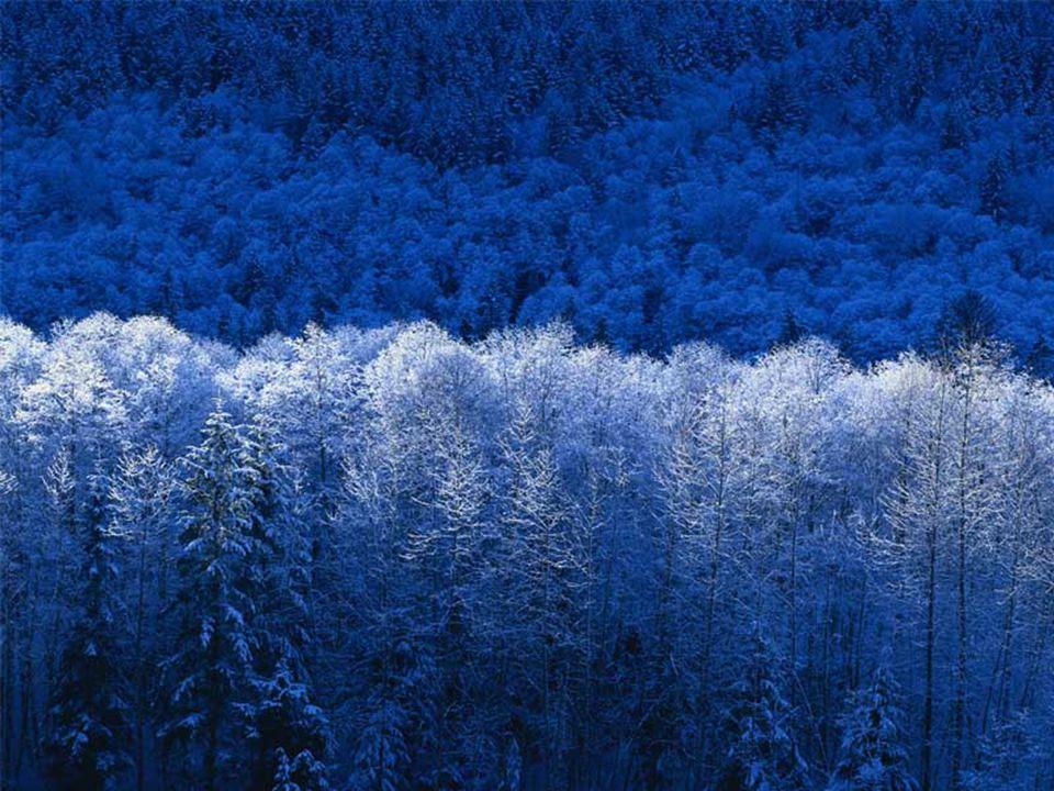 L Hiver Le calme, l introversion À l hiver de ton cœur, tu es plutôt tourné(e) vers toi-même.