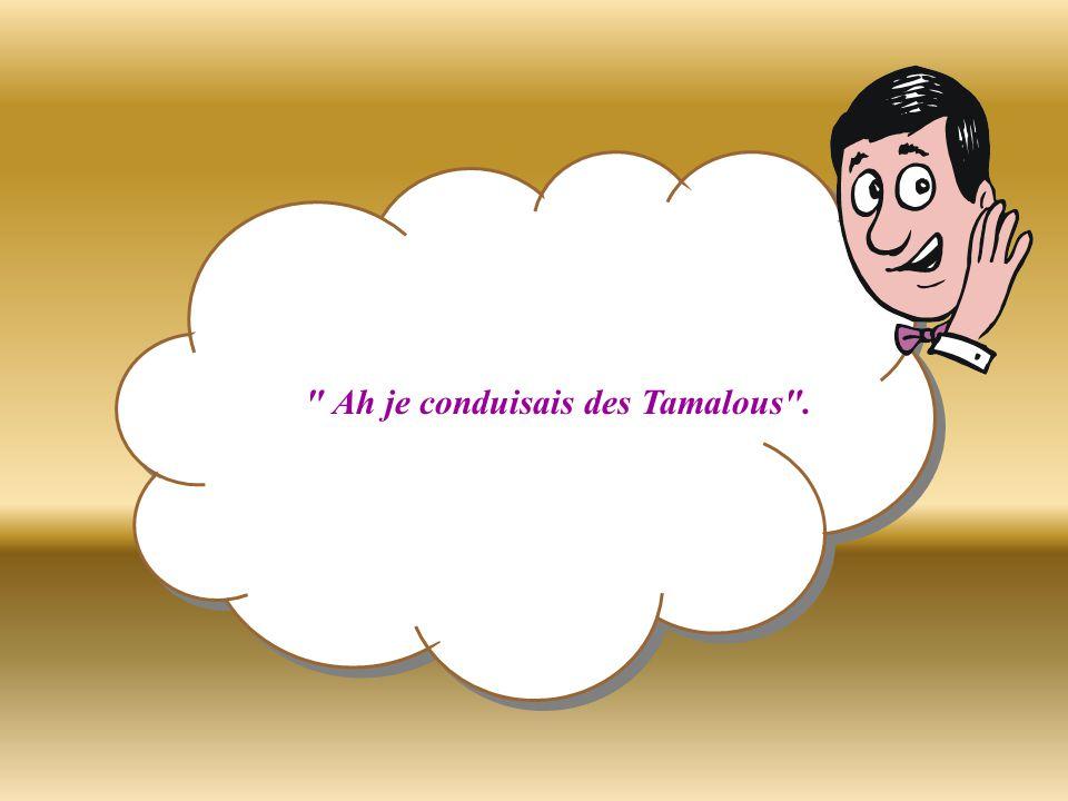 Les 2 autres lui demandent Qu est-ce que c est des Tamalous?