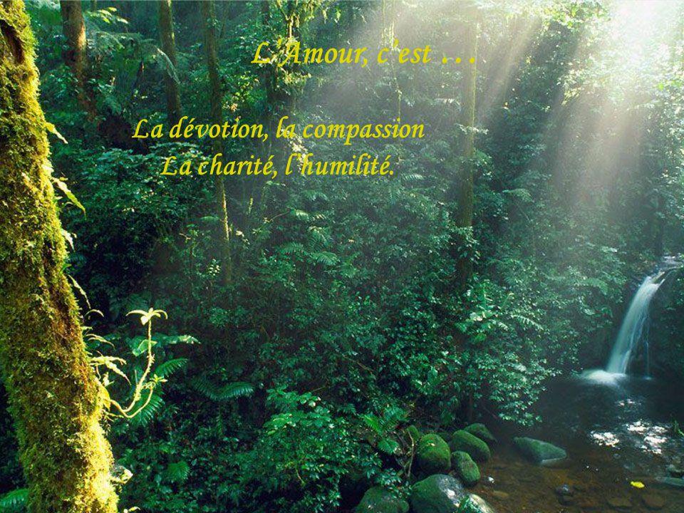 La dévotion, la compassion La charité, lhumilité. LAmour, cest …