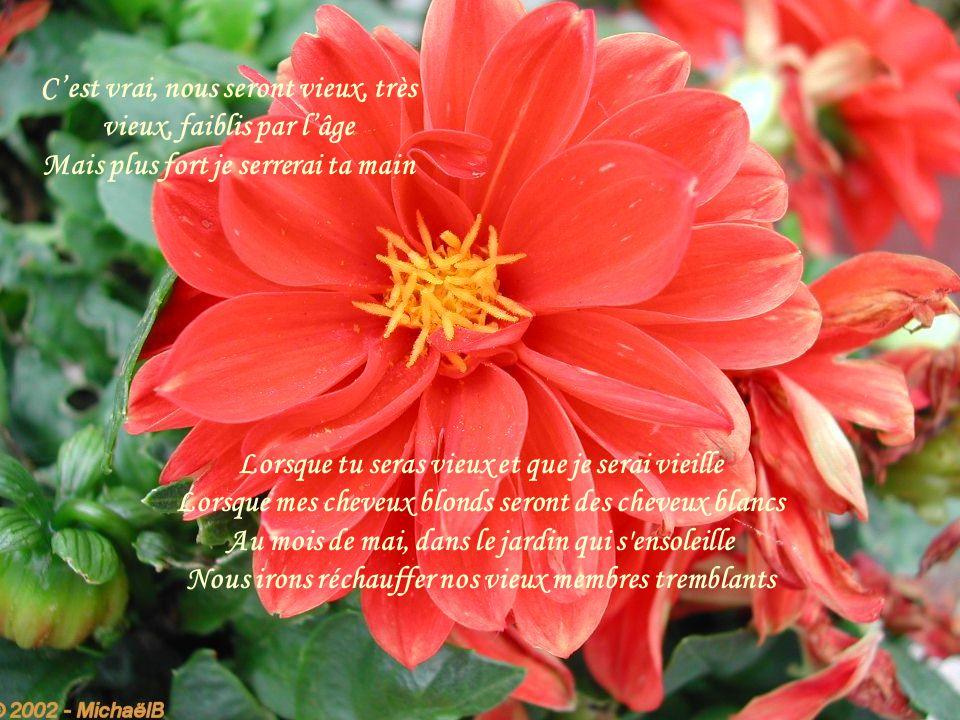 Songe à tous les printemps qui, dans nos coeurs, s'entassent Mes souvenirs à moi seront aussi les tiens Ces communs souvenirs toujours plus nous enlac