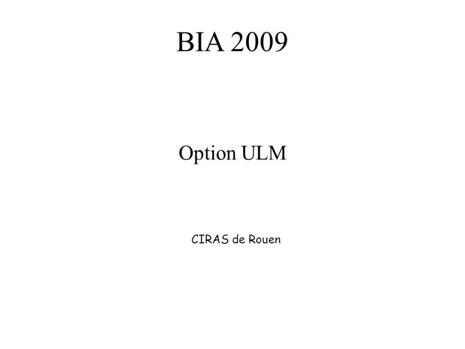 BIA 2009 Option ULM CIRAS de Rouen