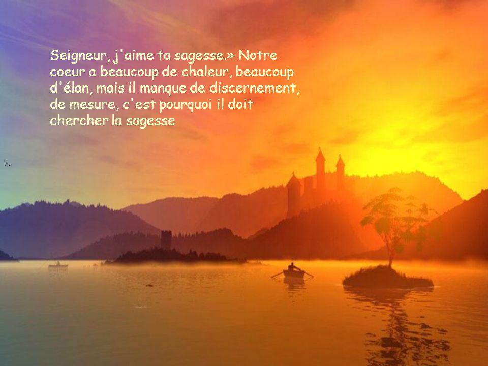 Je Seigneur, j aime ta sagesse.» Notre coeur a beaucoup de chaleur, beaucoup d élan, mais il manque de discernement, de mesure, c est pourquoi il doit chercher la sagesse