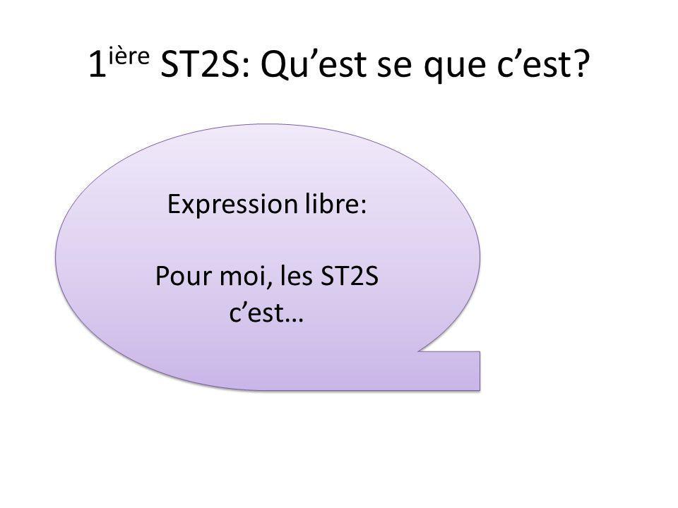 1 ière ST2S: Quest se que cest? Expression libre: Pour moi, les ST2S cest… Expression libre: Pour moi, les ST2S cest…