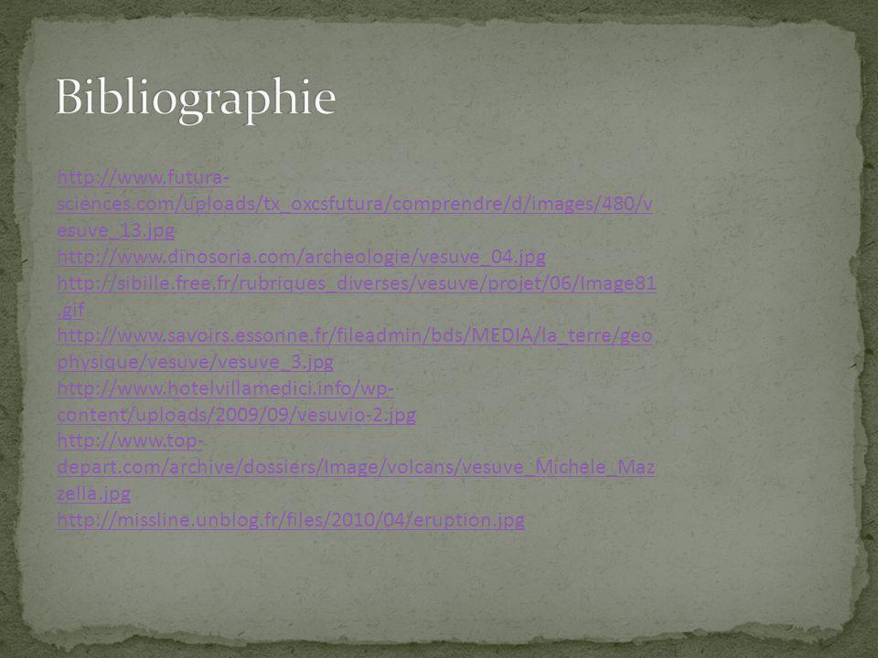 http://www.futura- sciences.com/uploads/tx_oxcsfutura/comprendre/d/images/480/v esuve_13.jpg http://www.dinosoria.com/archeologie/vesuve_04.jpg http:/