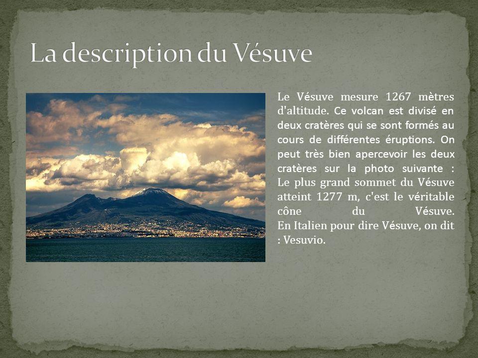 Le V é suve mesure 1267 m è tres d'altitude. Ce volcan est divisé en deux cratères qui se sont formés au cours de différentes éruptions. On peut très