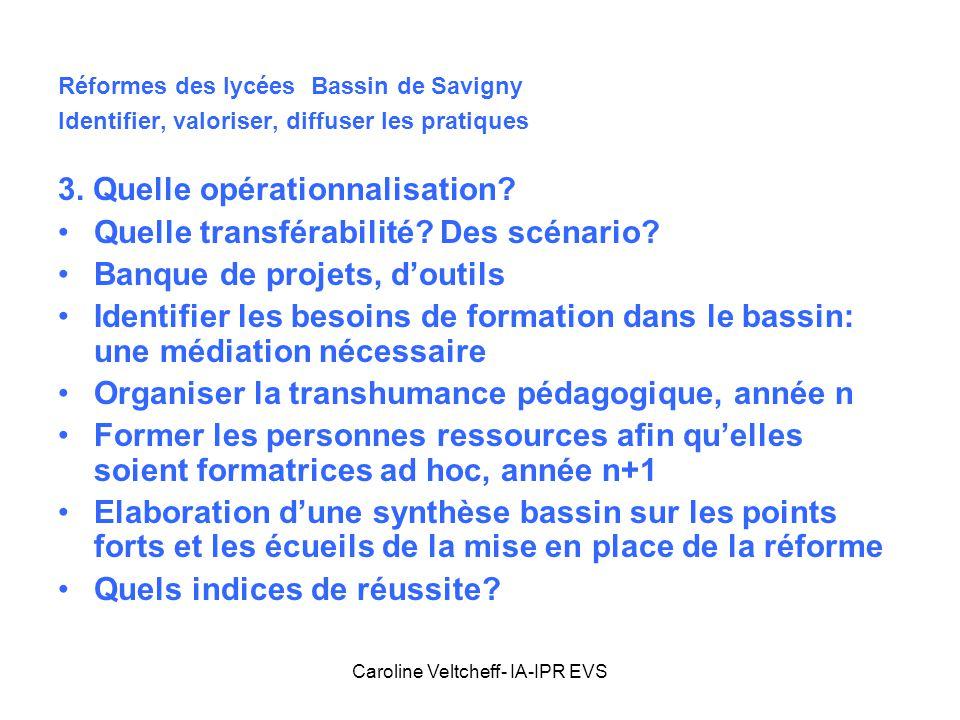 Caroline Veltcheff- IA-IPR EVS Réformes des lycées Bassin de Savigny Identifier, valoriser, diffuser les pratiques 3. Quelle opérationnalisation? Quel