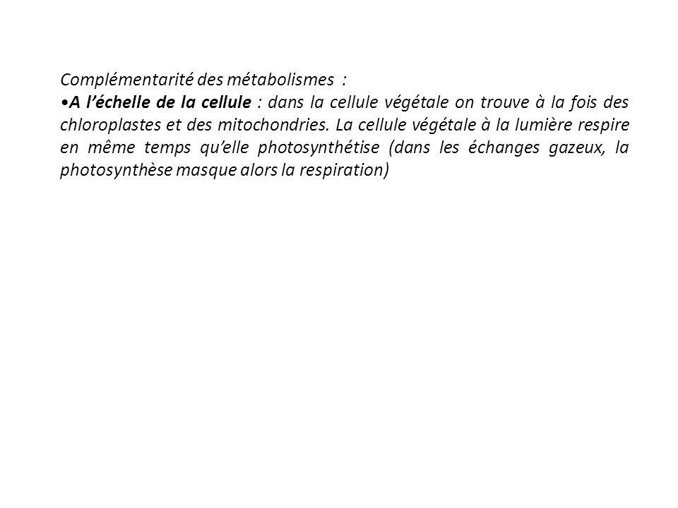 Complémentarité des métabolismes : A léchelle de la cellule : dans la cellule végétale on trouve à la fois des chloroplastes et des mitochondries. La