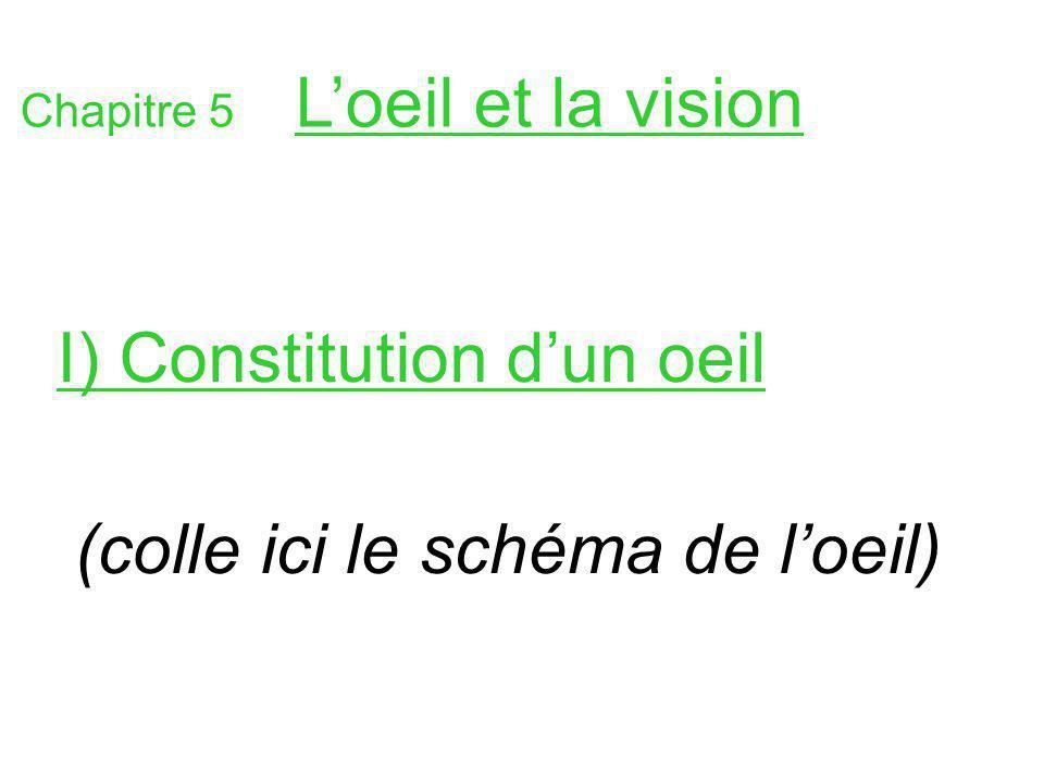 Chapitre 5 Loeil et la vision I) Constitution dun oeil (colle ici le schéma de loeil)
