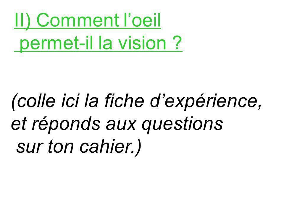 II) Comment loeil permet-il la vision .