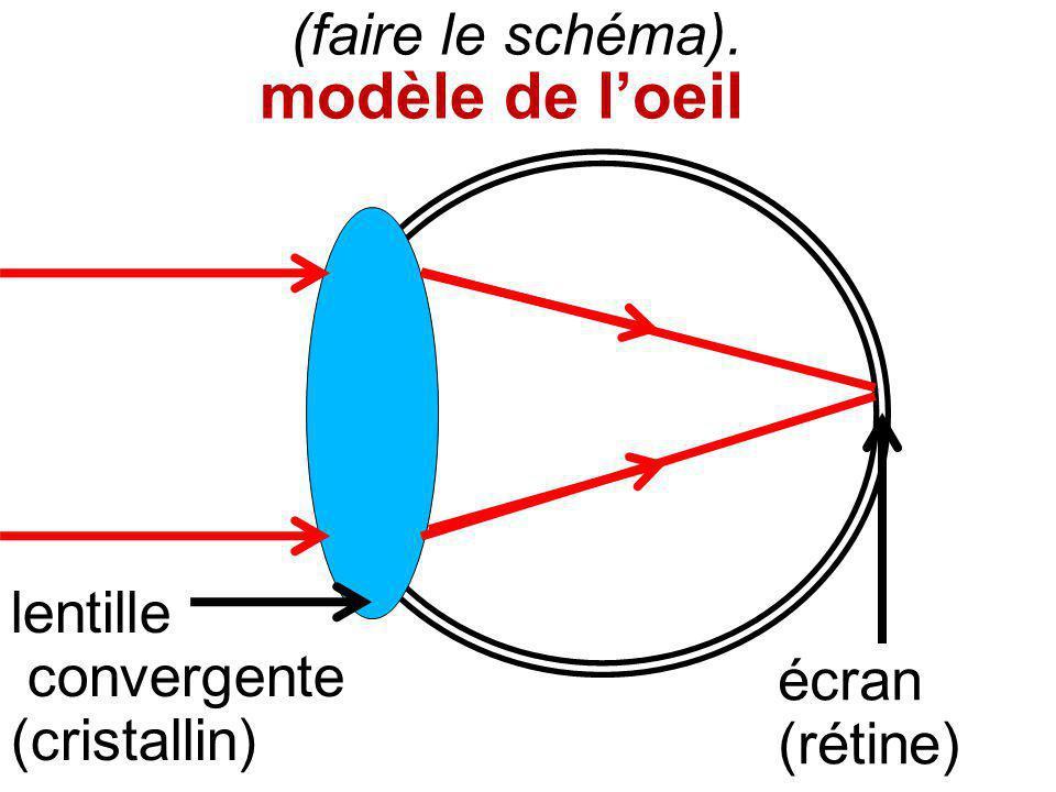 (faire le schéma). modèle de loeil écran (rétine) lentille convergente (cristallin)