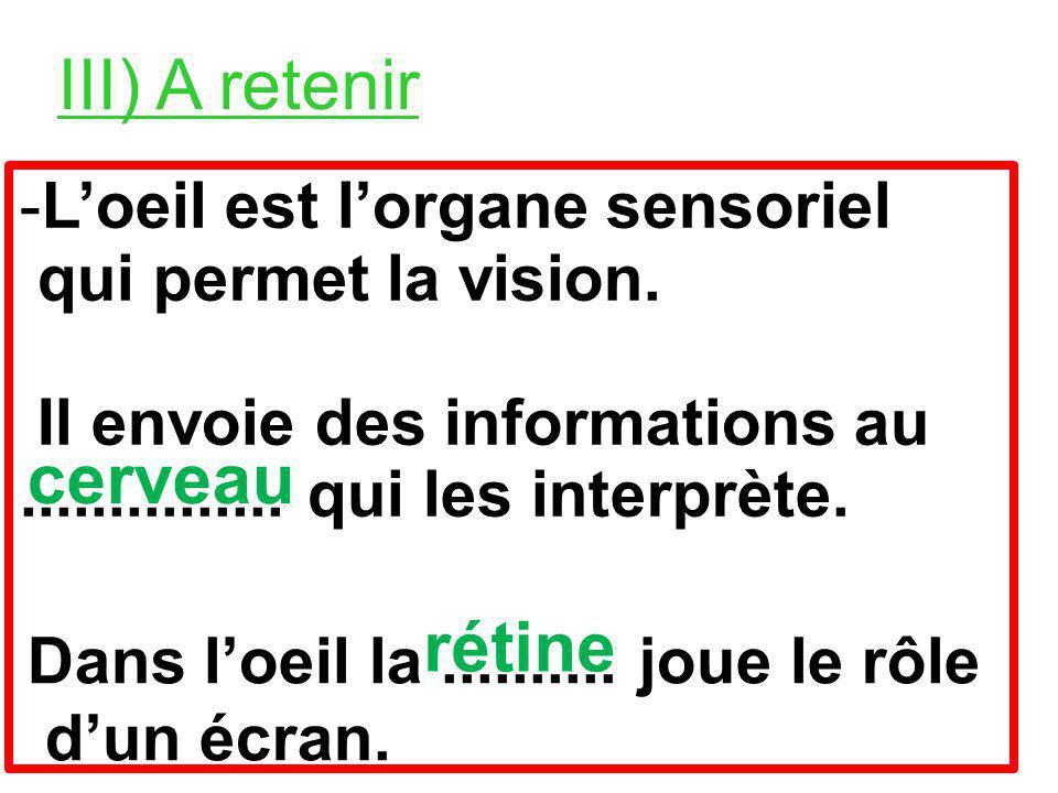 III) A retenir -Loeil est lorgane sensoriel qui permet la vision.