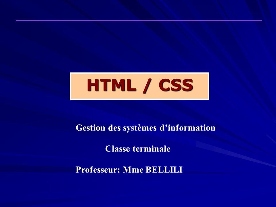 HTML / CSS Gestion des systèmes dinformation Classe terminale Professeur: Mme BELLILI