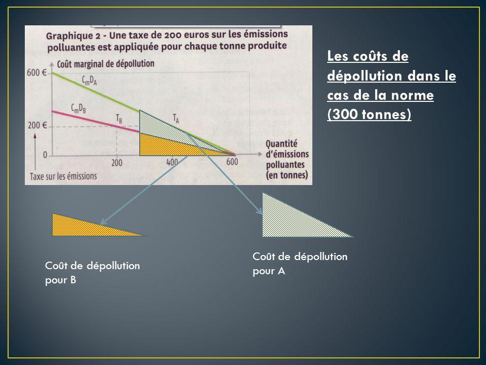 Coût de dépollution pour B Les coûts de dépollution dans le cas de la norme (300 tonnes) Coût de dépollution pour A