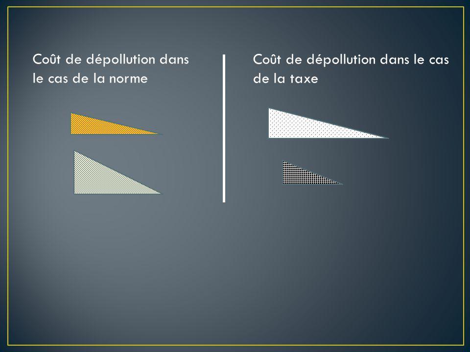 Coût de dépollution dans le cas de la norme Coût de dépollution dans le cas de la taxe