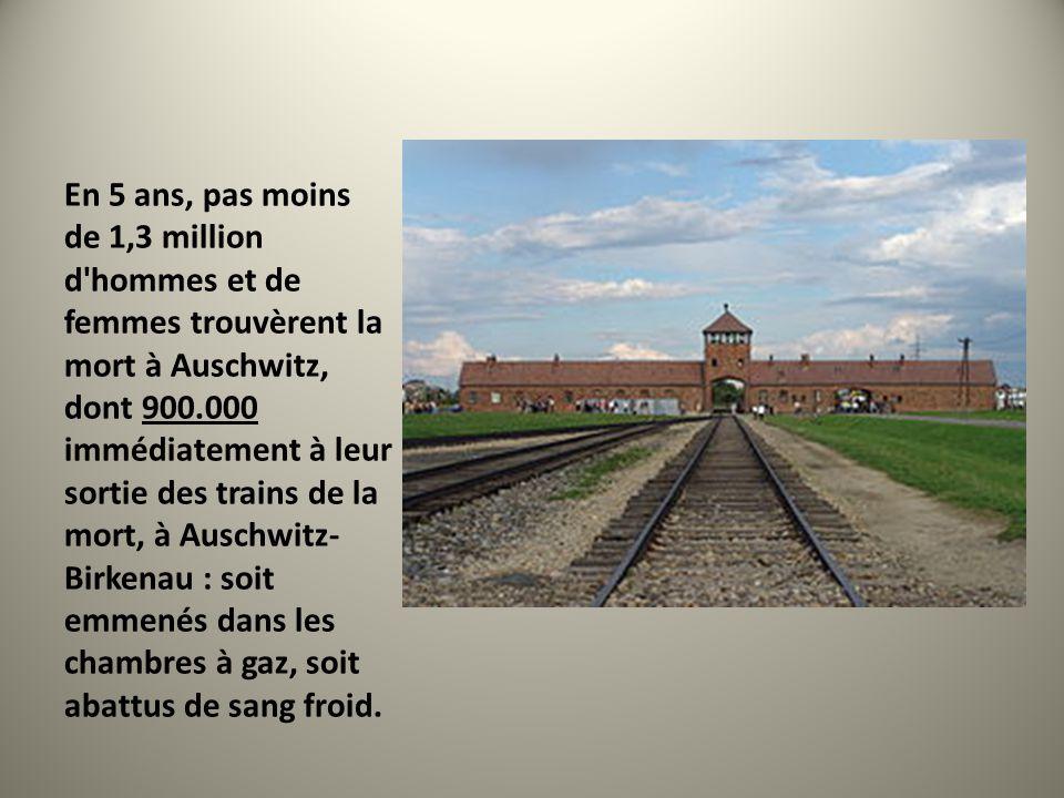 En 5 ans, pas moins de 1,3 million d'hommes et de femmes trouvèrent la mort à Auschwitz, dont 900.000 immédiatement à leur sortie des trains de la mor