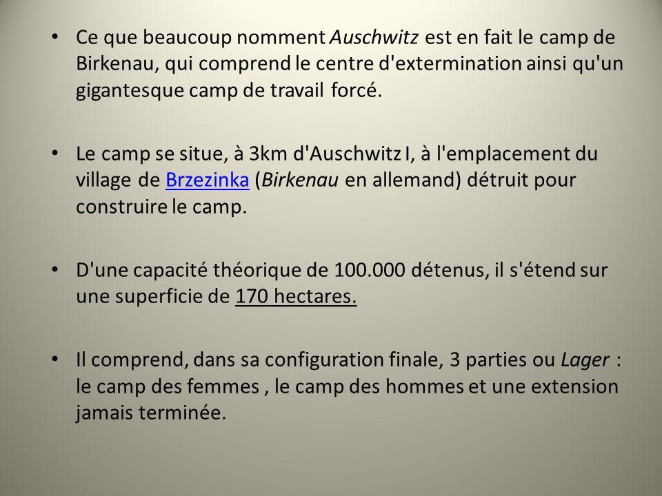 Ce que beaucoup nomment Auschwitz est en fait le camp de Birkenau, qui comprend le centre d'extermination ainsi qu'un gigantesque camp de travail forc