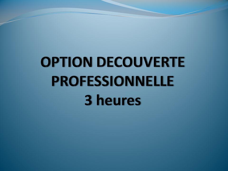 Quest-ce que la DP3.Une option facultative proposée aux élèves entrant en classe de 3 ème.