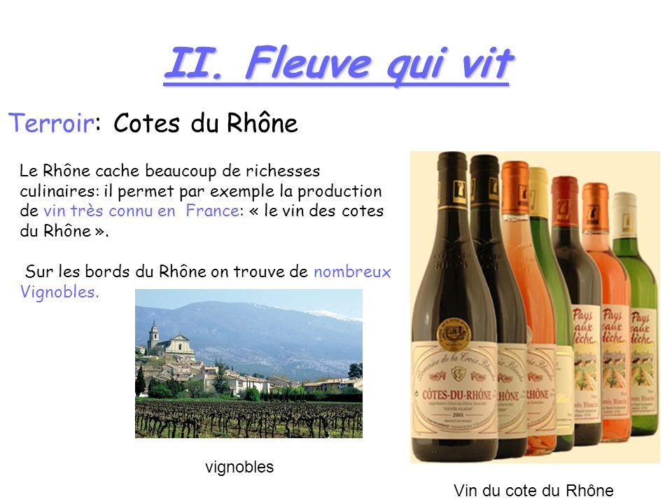 II. Fleuve qui vit Terroir: Cotes du Rhône Le Rhône cache beaucoup de richesses culinaires: il permet par exemple la production de vin très connu en F