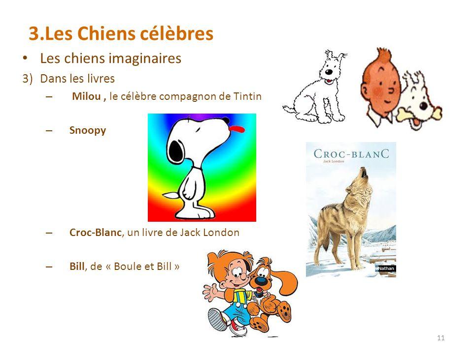 3.Les Chiens célèbres Les chiens imaginaires 3)Dans les livres – Milou, le célèbre compagnon de Tintin – Snoopy – Croc-Blanc, un livre de Jack London – Bill, de « Boule et Bill » 11
