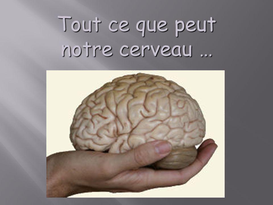 Tout ce que peut notre cerveau …