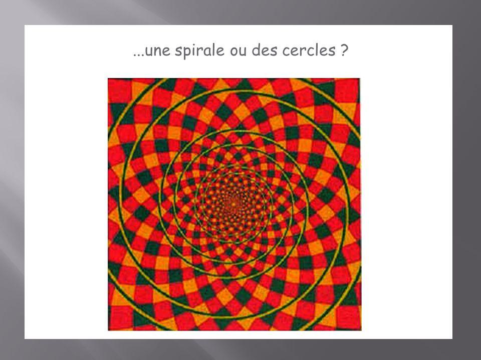 ...une spirale ou des cercles ?