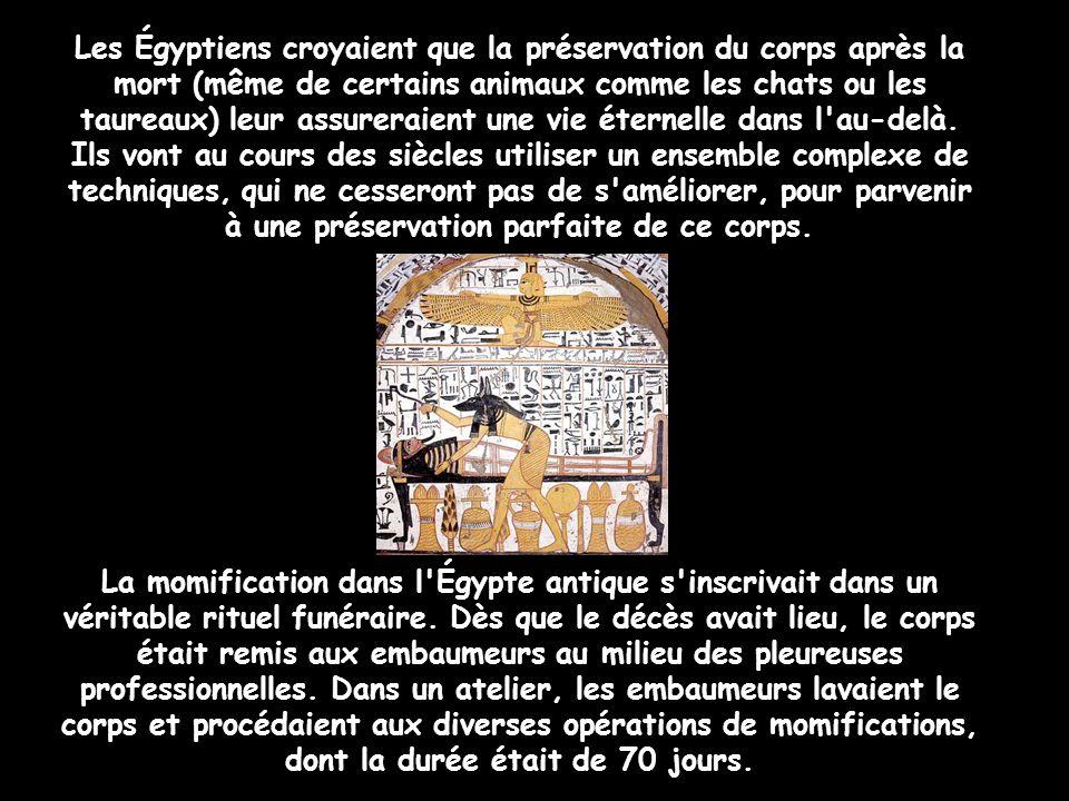 Les Égyptiens croyaient que la préservation du corps après la mort (même de certains animaux comme les chats ou les taureaux) leur assureraient une vie éternelle dans l au-delà.