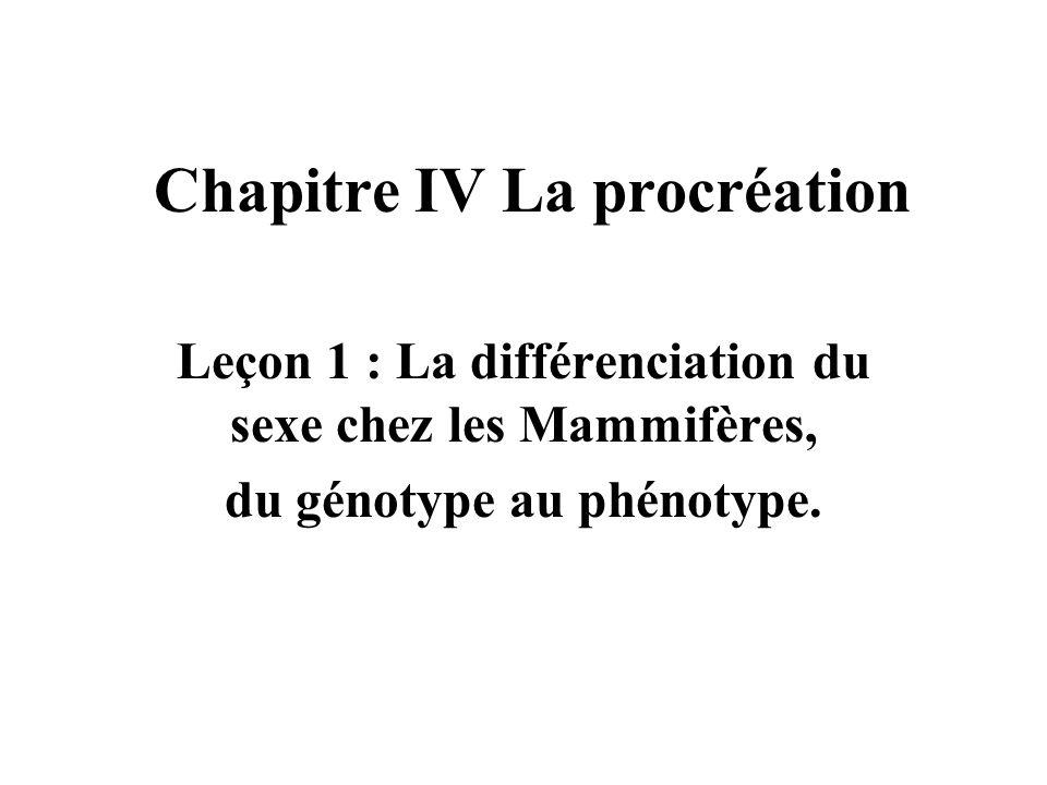 Chapitre IV La procréation Leçon 1 : La différenciation du sexe chez les Mammifères, du génotype au phénotype.
