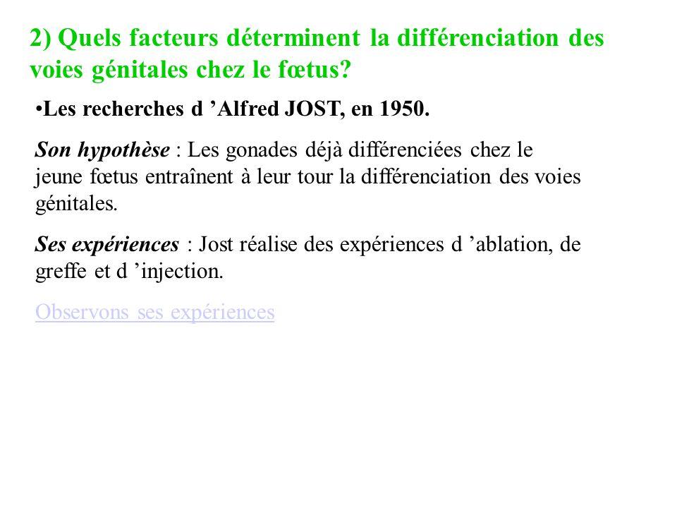 2) Quels facteurs déterminent la différenciation des voies génitales chez le fœtus? Les recherches d Alfred JOST, en 1950. Son hypothèse : Les gonades