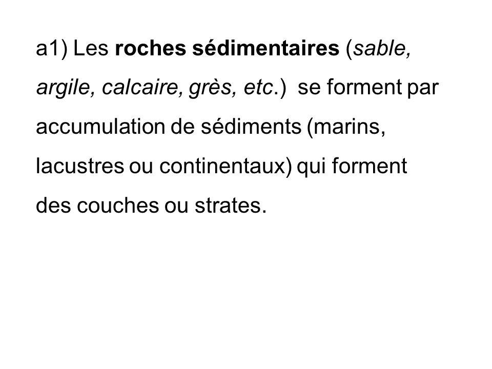 a1) Les roches sédimentaires (sable, argile, calcaire, grès, etc.) se forment par accumulation de sédiments (marins, lacustres ou continentaux) qui forment des couches ou strates.