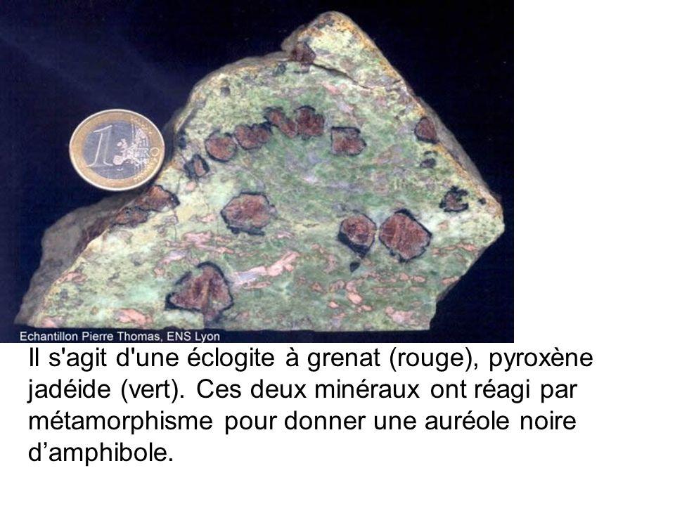Il s'agit d'une éclogite à grenat (rouge), pyroxène jadéide (vert). Ces deux minéraux ont réagi par métamorphisme pour donner une auréole noire damphi