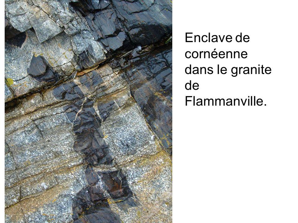 Enclave de cornéenne dans le granite de Flammanville.