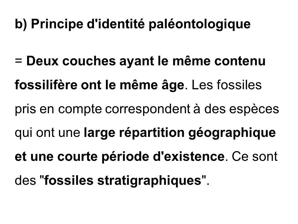 b) Principe d'identité paléontologique = Deux couches ayant le même contenu fossilifère ont le même âge. Les fossiles pris en compte correspondent à d